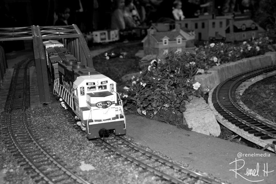 Train set - photo by Renel Holton - www.renelholton.com