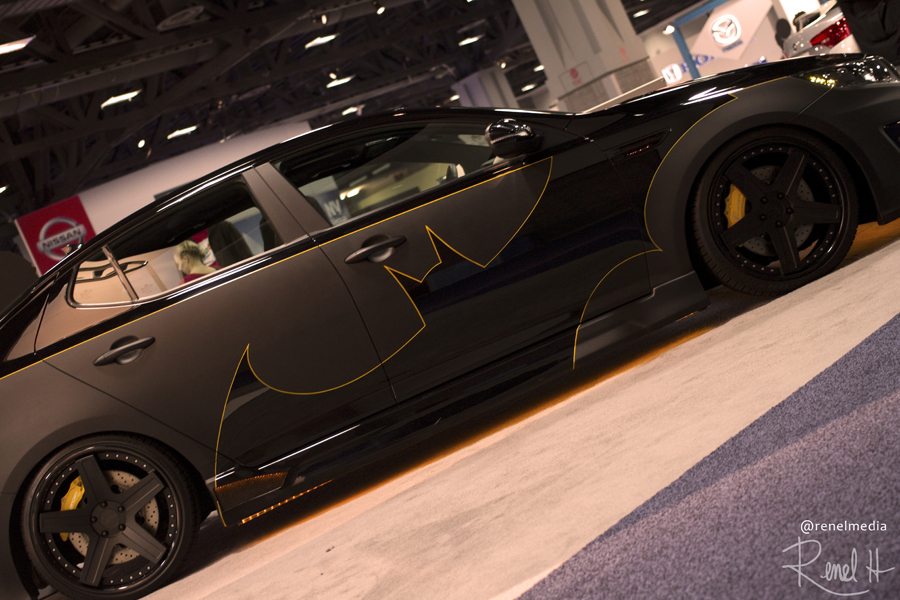 Batman Optima - photo by Renel Holton - www.renelholton.com / 1903